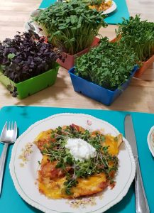 Microgreens with chiliquilles