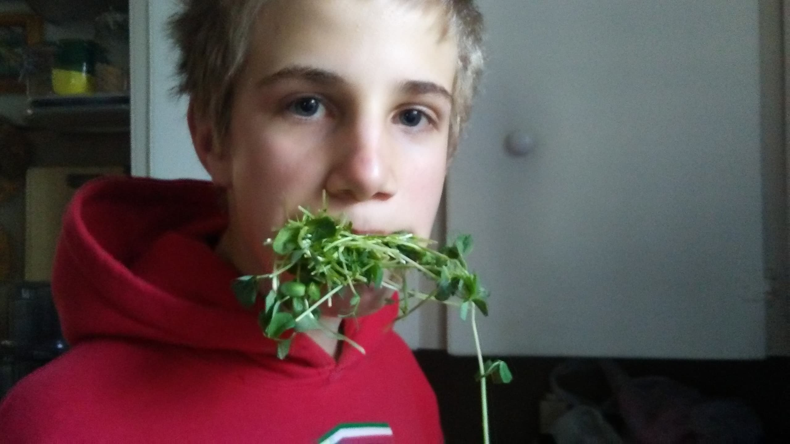 A teenager that eats his vegetables